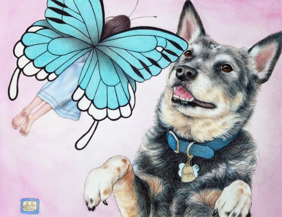 """Quig, always a good sport, let me photograph him for this illustration for my picture book, """"Glory in the Morning."""""""